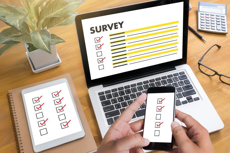 Situs Survey Berbayar Terbaik