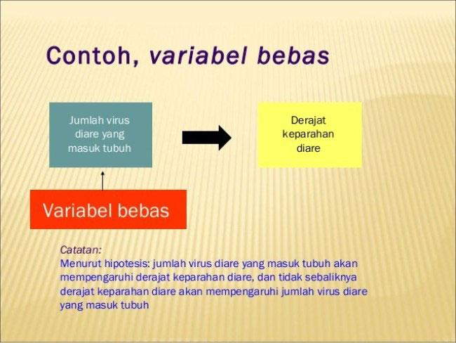Contoh Variabel Bebas