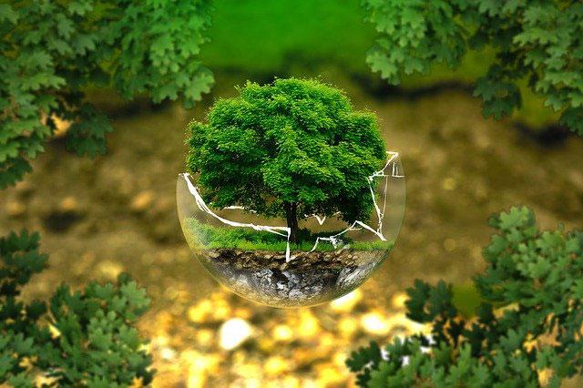 Manfaat Atmosfer Bagi Kehidupan Makhluk Hidup